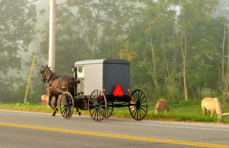 excursion-filadelfia-pueblo-amish